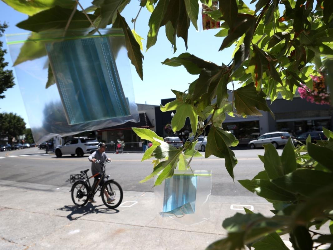 Surgical masks in Ziploc bags hang from a tree at Creek Park on August 10, 2020 in San Anselmo, CA. The group Age-Friendly Marin Network has started to hang clean face masks from trees in San Anselmo's Creek Park that are free to those who don't have one.