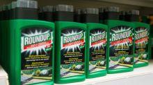 Glyphosate : 1,3 million d'Européens ont signé une pétition contre l'herbicide