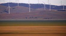 Iberdrola recibe luz verde de Australia a su oferta sobre Infigen