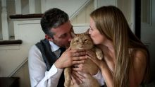 35-pound cat poses with adopted family in wedding photos