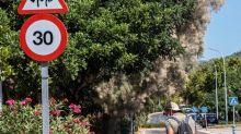 Madrid rechaza la decisión del Gobierno sobre la baja laboral de los padres