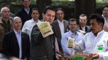 ¿Peña Nieto privatizó el agua durante el partido México -Alemania?