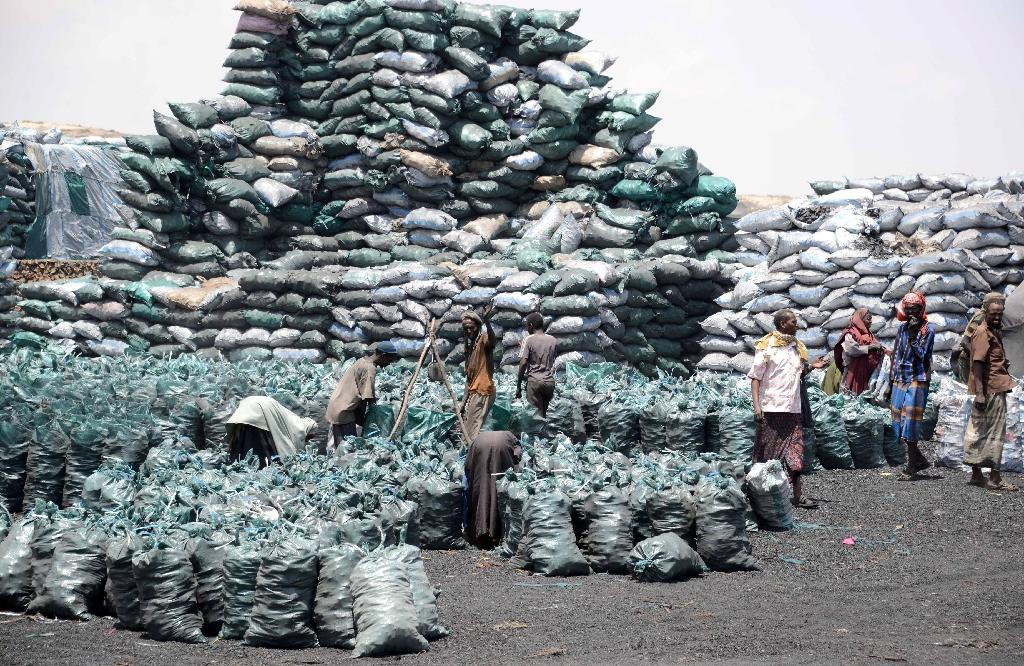 Somali workers fill sacks with charcoal on February 27, 2013 as they are prepared for transportation near the Kismayo seaport (AFP Photo/Mohamed Abdiwahab)