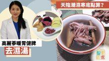 【湯水食譜】天陰潮濕手腳冰冷點算?高麗蔘暖胃健脾去濕湯