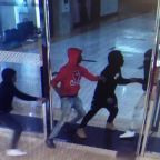 Group wanted in Louis Vuitton purse theft at Northbrook Court