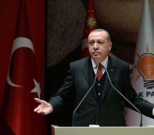 Erdogan says Turkey must clear Syria's Afrin of YPG militia