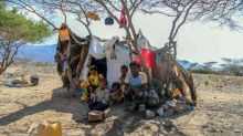 Yemen's displaced families struggle to survive