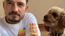 Orlando Bloom Mourns the Death of His Dog With Touching Tattoo Tribute