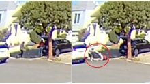 Asian Woman in SF Followed, Robbed of $16,000 Rolex at Gunpoint