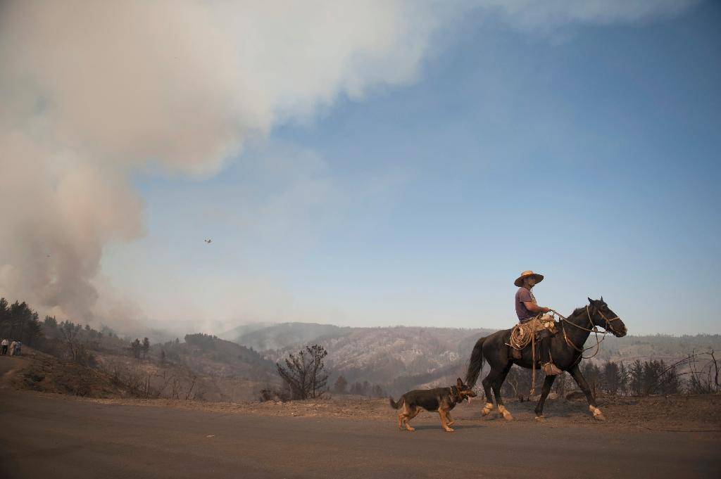 A Chilean man rides through areas affected by the forest fire, in Valparaiso, Chile on March 14, 2015 (AFP Photo/Vladimir Rodas)