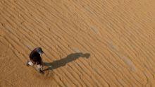 Rupee slide pushes India rice rates to 7-week low, Vietnamese exports dip