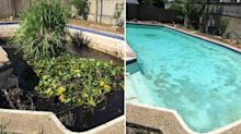 'Worst ever': Aussie pool cleaner reveals pool so dirty there's a tree growing in it