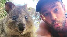 Warum man keine Selfies mit Tieren machen sollte