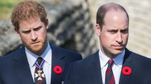 Harry and Wills' royal rift the 'most profound' conflict in generations, expert claims