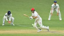 Lehmann ensures SA hold on for Shield draw