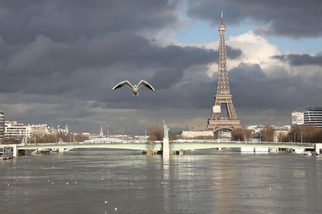 Flooding in Paris has caused around 1,500 people to evacuate their homes (AFP Photo/Ludovic MARIN)
