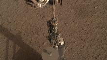 Aus nach 30 Zentimetern: Deutscher Marsmaulwurf hängt fest