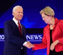 Poll shows Joe Biden and Elizabeth Warren gaining in the Democratic field