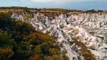 À Lyon, une exposition immersive sur la région méconnue de Makay, trésor de la biodiversité malgache