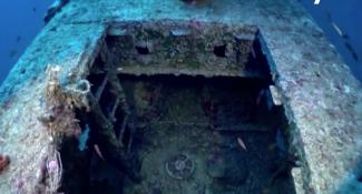 500kg鬼網纏繞 79年沉船竟變醬