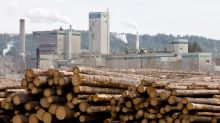 West Fraser Timber withdraws 2020 production outlook due to COVID-19