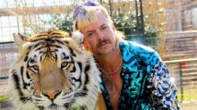 The best memes from Tiger King, Netflix's wildest documentary
