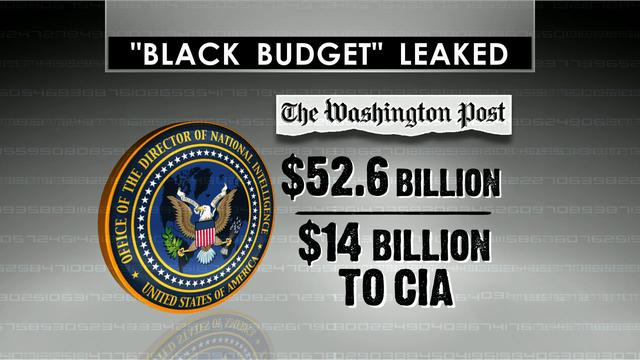 How damaging is release of America's top-secret spy budget?
