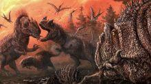 In lean times, fierce dinosaur Allosaurus resorted to cannibalism