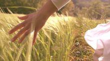 La prima fibra al mondo 100% naturale e ignifuga è italiana