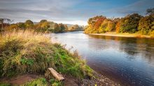 'Total failure' on English river water quality