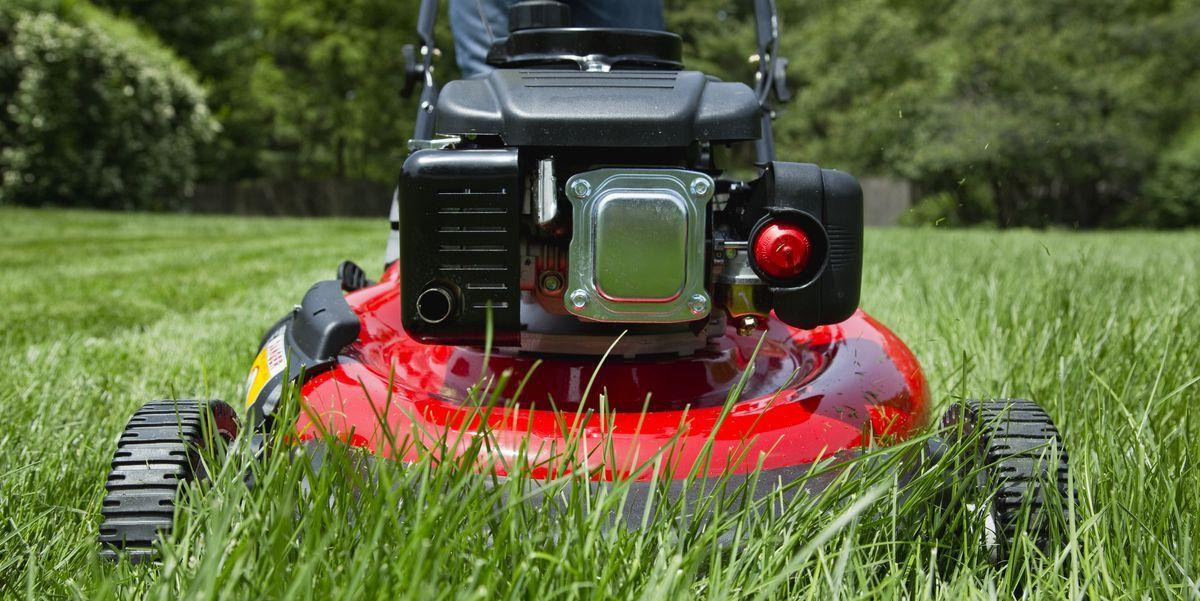 The 10 Best Electric And Gas Mowers For Any Yard