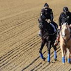 Medina Spirit will compete in Preakness Stakes, Derby win still in doubt
