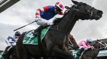 Sherry winless as Spaceboy does it again