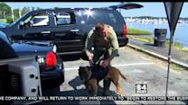 Local Company Creates Technology For K-9 Teams