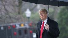 Donald Trump: Kurioses Bild entblößt US-Präsidenten