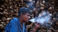 Tobacco farmers' body urges govt for 'pragmatic' approach on cigarette taxation; says NCCD hike in Budget to increase smuggling