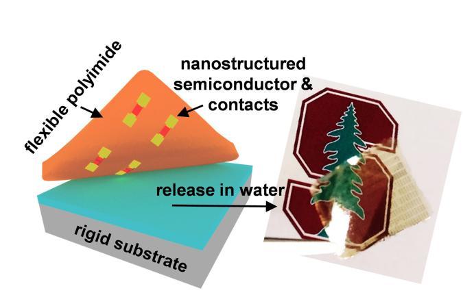 Stanford flextronics electronic skin