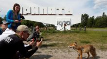 HBO show success drives Chernobyl tourism boom