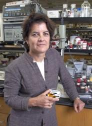 Brown U. is building better batteries with plastic
