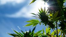 3 Things to Watch For Before You Buy Aurora Cannabis Stock