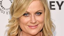 Amy Poehler blasts NRA for using 'Parks and Recreation' image to promote its agenda