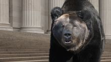 The 'Baby Bear' Market May Inflict More Pain In 2019
