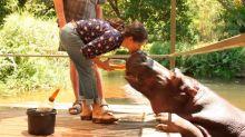 Salma Hayek besa a un hipopótamo y espanta hasta a su hija; mira el video
