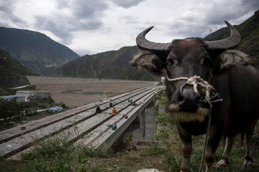 A colossal construction site in Sichuan province swallows three rivers, providing another display of China's engineering prowess but also of the trauma it inflicts on people and nature along the way. (AFP Photo/Johannes EISELE)