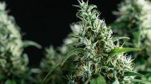Aurora Cannabis Finally Lands a Partner... Sort Of