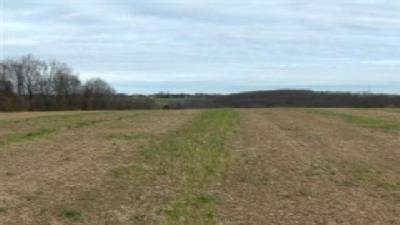 Carroll County To Residents: Name This Park