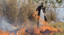 O que é o combate do fogo com o fogo, técnica usada no Pantanal e distorcida em vídeo que circula no WhatsApp