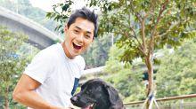 鄭俊弘認用釘帶訓練愛犬