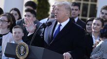 Usa, un anno di Trump: tra scandali e promesse mantenute