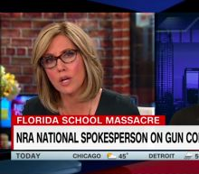 'How dare you': CNN's Camerota clashes with NRA's Loesch over her claim that media 'love' mass shootings